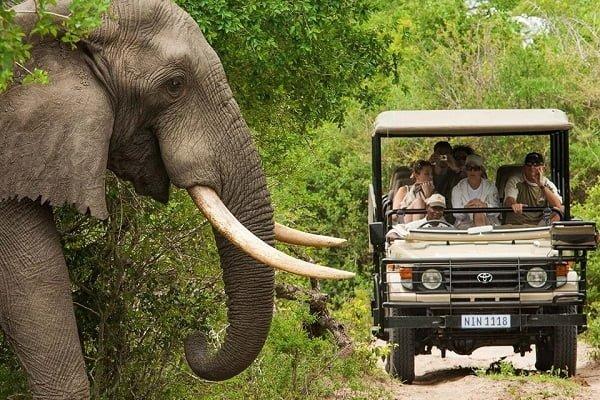Vacaciones en Sudáfrica Sumaj Travel